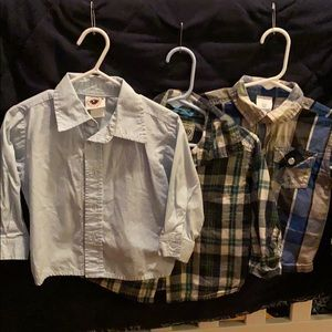 Three 18mon button down dress shirts.